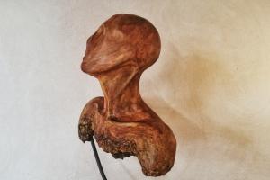 human-IV